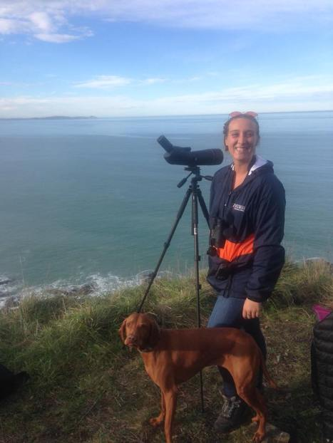 Shore-based studies help us track the movement of marine wildlife across the bay.